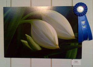 Artist Lorenzo Cassina Was The Winner Of The 2013 Photo Contest In The Garden Category At Flamingo Gardens In Davie, Florida